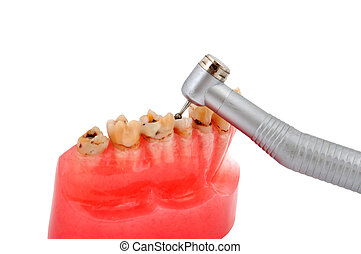 jaw and dental handpiece