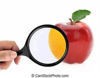dieta, conceito, frutas, contra, celulite