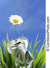Aluminum can with growing daisy flower on the green grass
