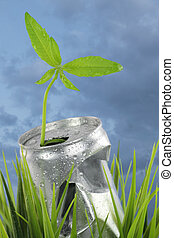 Aluminum wet can with growing plant on the green grass