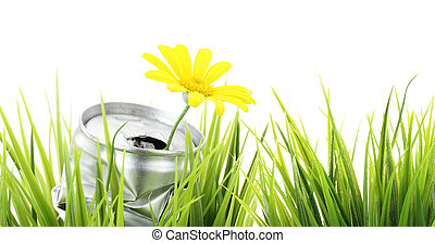 Green eco banner. Aluminum can with growing daisy flower