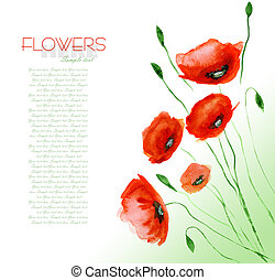 Poppy Flower Watercolor Hand Drawn and Painted