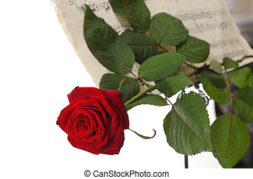 red rose and old notes Sheet music - red rose and old note...
