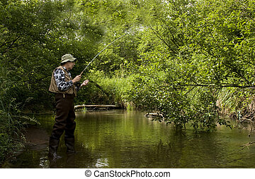 trout fishing - trout fisherman in a stream wearing waders...