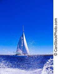 hermoso, mar, velero