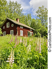 Rural cottage and garden - A beautiful rural cottage and...