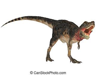 Tarbosaurus - Illustration of a Tarbosaurus (dinosaur...