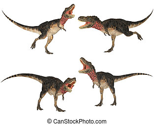 Tarbosaurus Pack - Illustration of a pack of four (4)...
