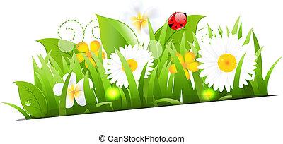 mazzo, di, fiori, con, erba, e, coccinella