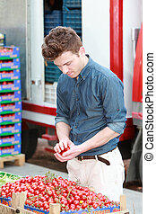Young man at grocery choosing tomatoes