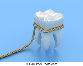 Human tooth - Illustration of human tooth in a loop on a...