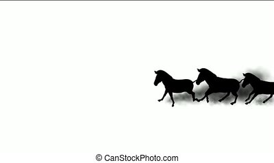 a group of horses silhouette running dust