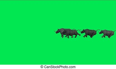 rhino running with green background