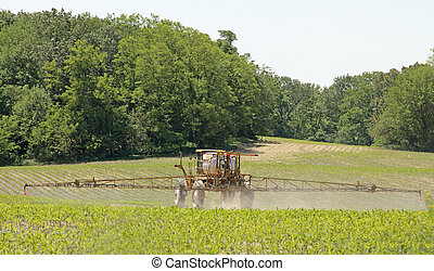 Crop Sprayer - Crop sprayer applying chemicals to a corn...