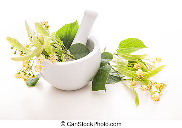 Linden blossom - Flowers of linden tree in a mortar....