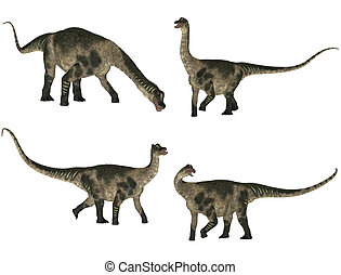 Antarctosaurus Pack - Illustration of a pack of four (4)...