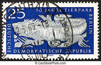 Postage stamp GDR 1965 Common Iguana - GDR - CIRCA 1965: a...