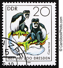 Postage stamp GDR 1986 Colobus Monkey - GDR - CIRCA 1986: a...