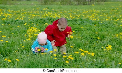 boy and small girl on meadow with dandelio