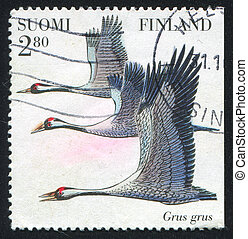 bird - FINLAND - CIRCA 1997: stamp printed by Finland, shows...