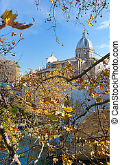 autumn tree branch under Tiber river in Rome, Italy