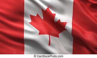 Seamless Canadian Flag Loop - Flag of Canada waving in the...