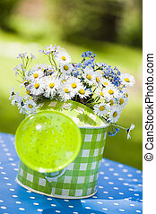 Watering can with daisy flowers - Watering can in nature...