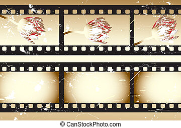 Retro movie strips with tulips and without something