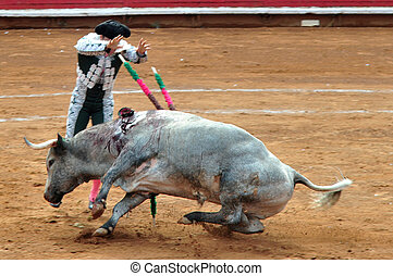 Mexican Bull-fight - Bull-fight in Plaza de Toros Bull Ring...