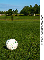Soccer Field - a soccer ball on the field with a goalpost in...