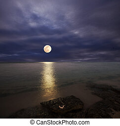 Moonlight - moonlight
