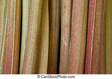 Rhubarb stems on the vegetable market