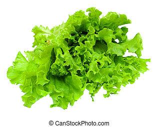 Green lettuce isolated on white