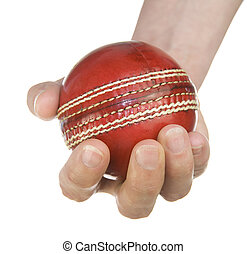 holding cricket ball on white background