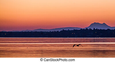 Dawn at Lake Geneva - Dawn breaking at Lake Geneva,...
