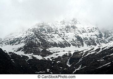 Snowy, Rocky Mountain
