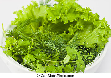 green vegetable - the green vegetable mixed in many kinds