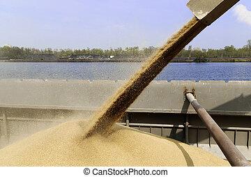 barge loading - loading of a barge holds