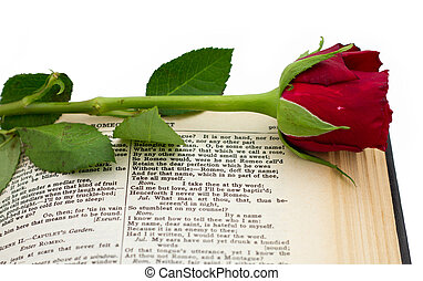 Shakespeare Romeo Juliet Red Rose - Shakespeare quote from...