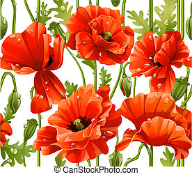 seamless pattern of red poppies realistic