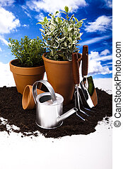 Garden background - Flowers and garden tools on blue sky...