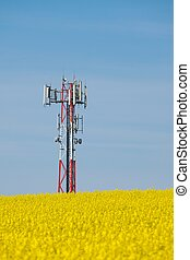 Transmitter - Signal transmitter tower over a blooming field