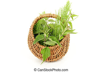medicinal plants - wild herbs harvested in June