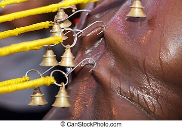 indian devotee piercing - piercing skin of indian devotee in...