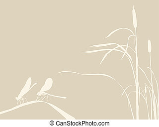 two dragonflies on brown background, vector illustration