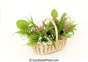 Wild herb basket