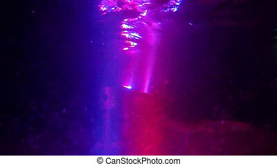 Underwater lamps blinked - Underwater multicolor pool lamps...