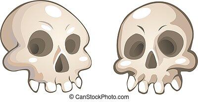 vector cartoon skulls