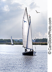 Sailboats on the lake - Relaxing on the water in sailboats...