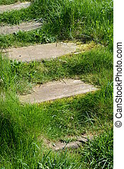 Stairs in grass on Helgoland
